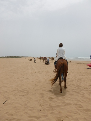 horseback-riding-beach-essaouira.jpg